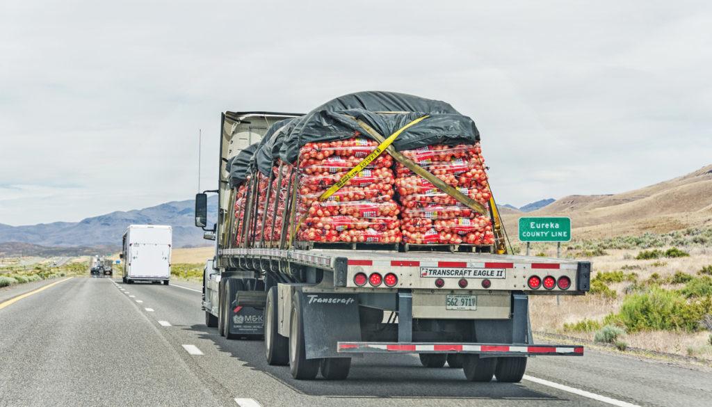 Truck Hauling Onions near Dunphy Nevada