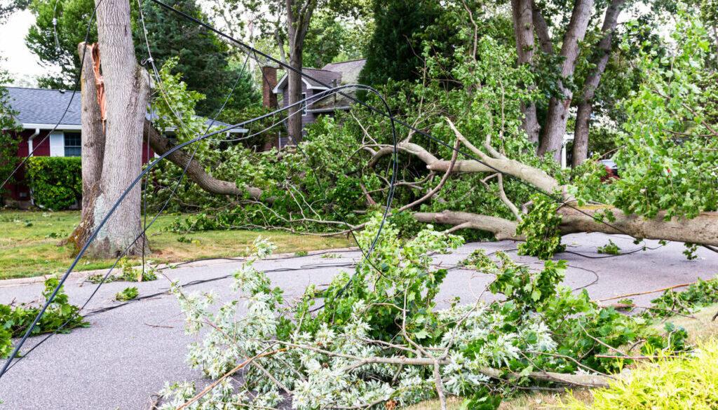 New_York_Declares_Emergency_for_Tropical_Storm_Henri