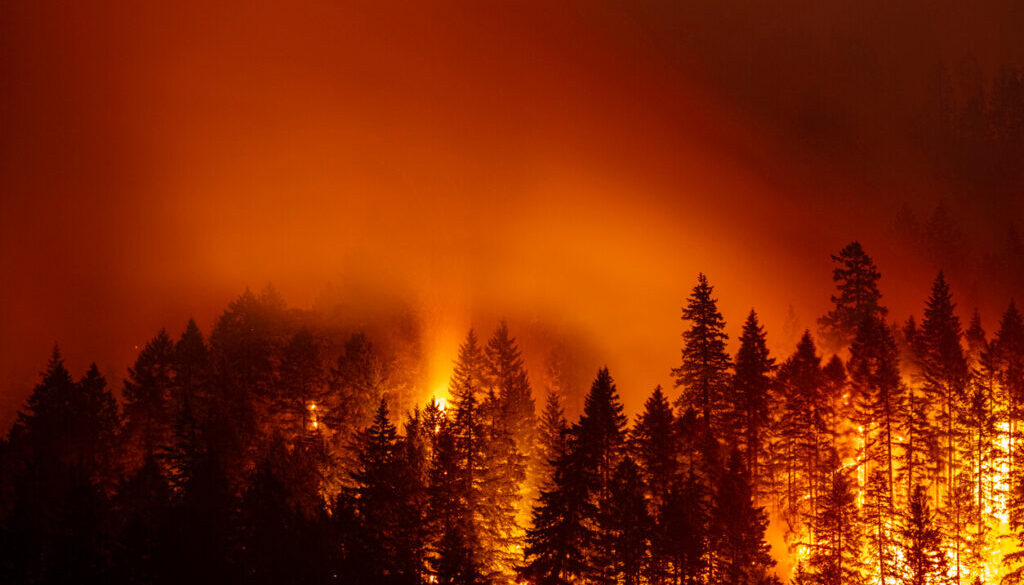 States_State_of_Emergencies_for_Wildfires