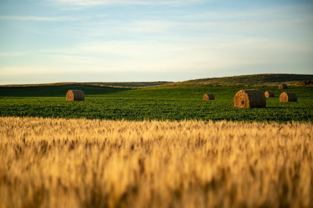 North_Dakota_Issues_State_of_Emergency_to_Save_its_Farms